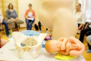 Модель новорожденного
