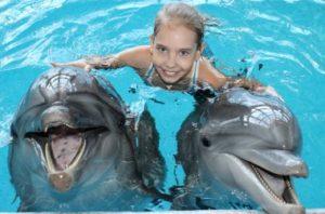 в дельфинарии с дельфинами девочка