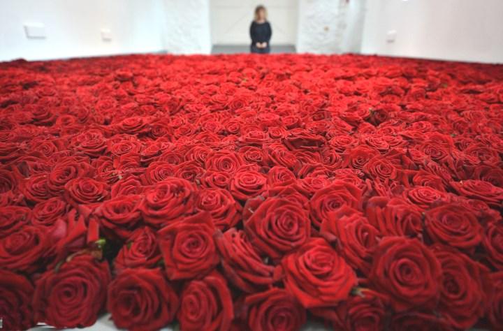 Море из миллиона красных роз