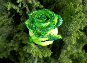 Роза с блестками