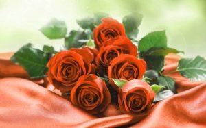 Розы мужчине