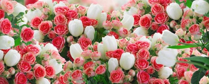 Попробуйте собрать весенний букет: розы и тюльпаны