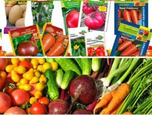 Саженцы овощей