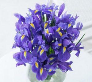 необычные синие цветы в прозрачном стакане