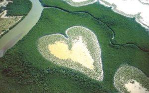 Валентинка от природы