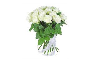 Розы белого цвета
