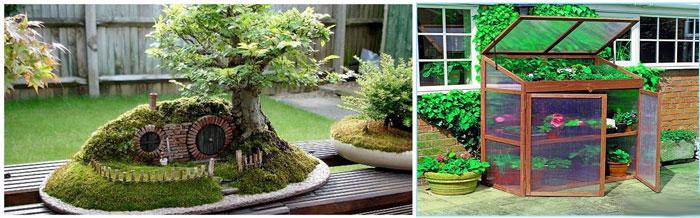 Мини-сад и мини-оранжерея