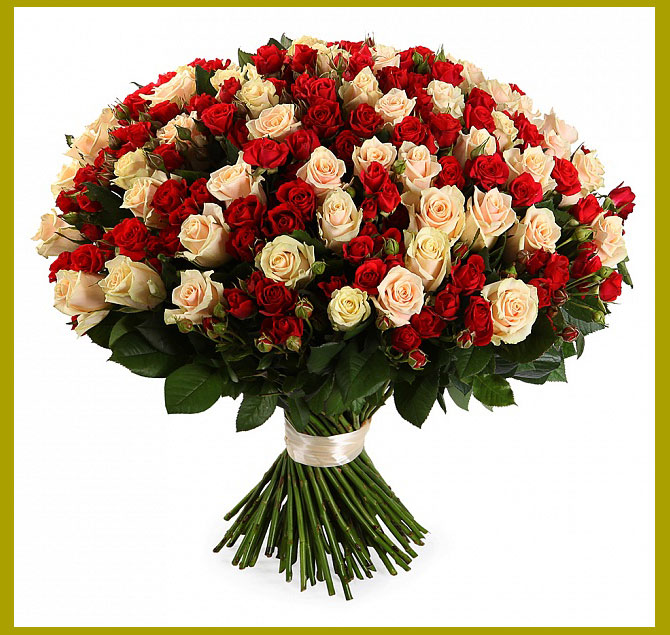 Букет роз красные и белые