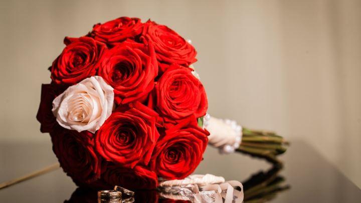 Красные розы и одна белая