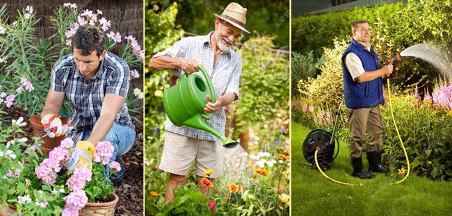 Садовники мужчины