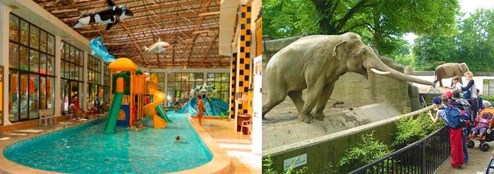 Дети в аквапарке и зоопарке