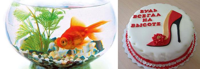 Аквариум с золотой рыбкой и торт - будь всегда на высоте