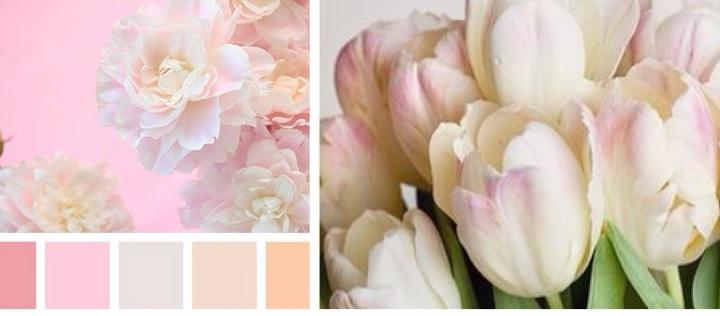 Розовые оттенки в природе