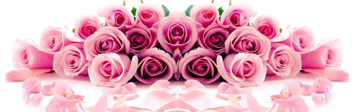 Нежно розовые розы лилового оттенка