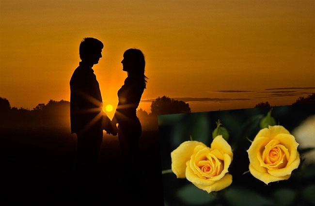 Пара вечером и 2 желтые розы