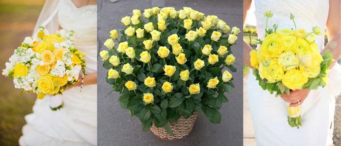 Жетые розы в букетах невест