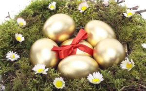 Гнездо с золотыми яйцами