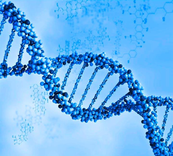 ДНК-портрет в подарок