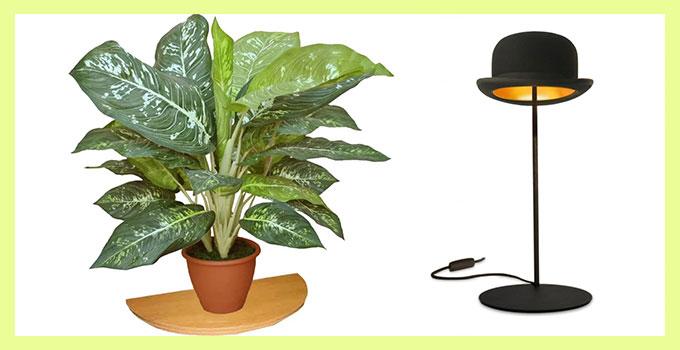 Комнатное растение в горшке и настольная лампа