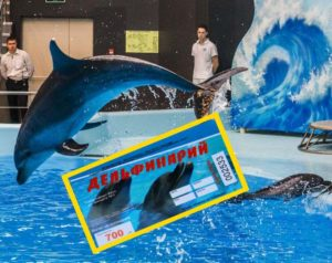 Синий дельфинарий