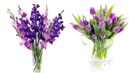 Букет гладиолусов и тюльпанов