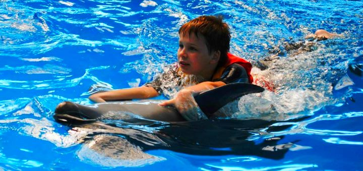 В дельфинарии мальчик