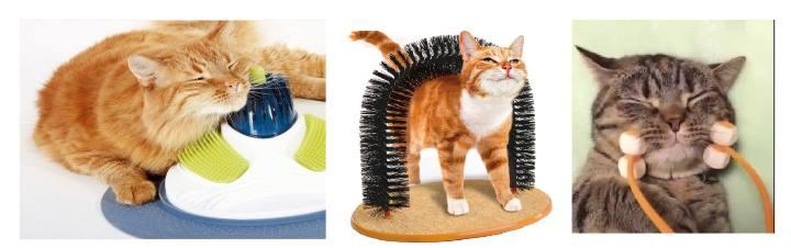 Девайсы для кошачьего массажа