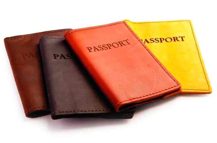 Разного цвета обложки для паспорта