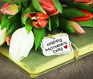 Тюльпаны для мамы