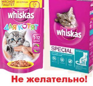Не дарите коту Вискас!