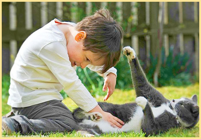 Мальчик играет с котом