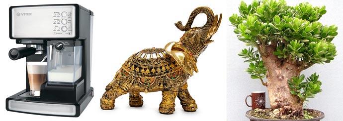 Кофеварка, слон статуэтка и денежное дерево