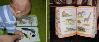 Малыш и книжка с животными и растениями