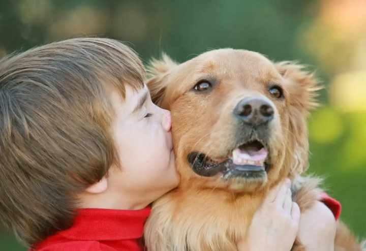 Ребенок счастлив от собаки