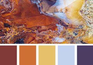 Желто-коричневый цвет в природе